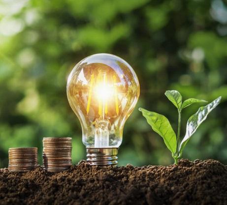 investor acceleration تبلیغات سرمایه گذار investors